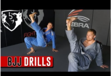 Hip Mobility for BJJ - Best Exercises and Stretches