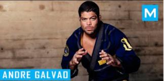 Andre Galvao bjjspot