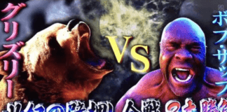 Bob Sapp vs a Bear