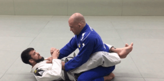 Basic guard passes