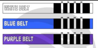 The Best jiu jitsu Belts 2018