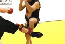 Best Muay Thai Shin Guards 2018