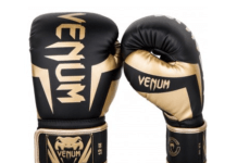 Best Muay Thai Gloves 2018