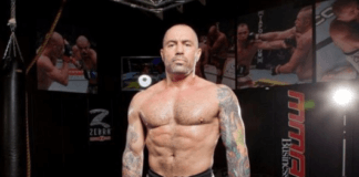 Joe Rogan: Jiu-Jitsu, Judo, and Wrestling Absolute Martial Arts.