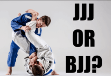 Differences between Japanese (traditional) Jiu-Jitsu and BJJ