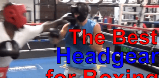 Best Boxing Headgear for 2019 - Reviews