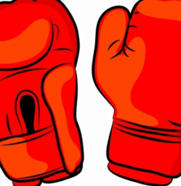 Best Cheap Boxing Gloves for 2018 - Reviews and Guide