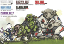 Complete guide to Brazilian jiu-jitsu belts/ all you need to know about belts
