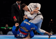 Professional BJJ Athletes vs Recreational Practitioners