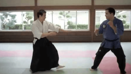 BJJ vs Aikido - Differences and Similarities